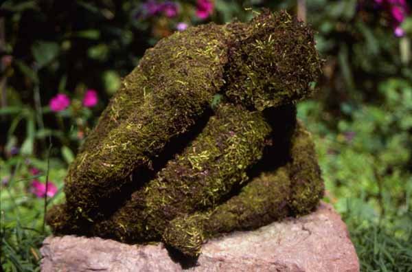 Sculpted figure in paperclay and moss Zoras Garden Lore Stephan